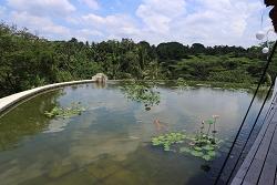 フォーシーズンズ リゾート バリ アット サヤンの画像3.jpg