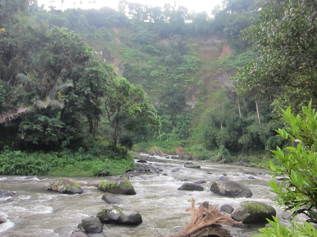 ロイヤルピタマハ アユン川