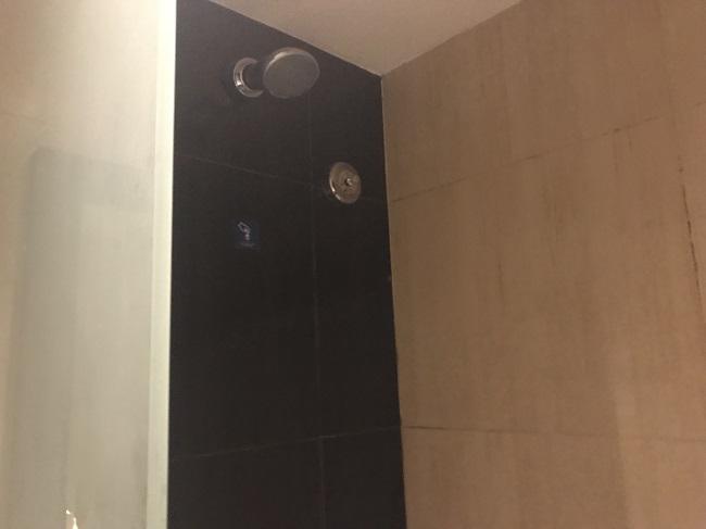 アストン クタ ホテル&レジデンス スーペリアルーム シャワー